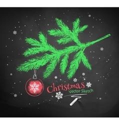 Christmas tree fir branch vector image