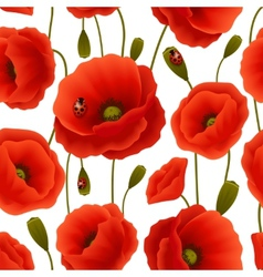 Poppy seamless pattern vector image vector image