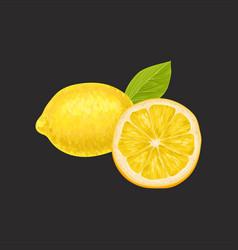 fresh lemon whole and cut in half sour citrus vector image