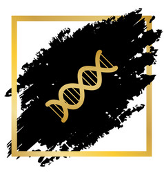 The dna sign golden icon at black spot vector
