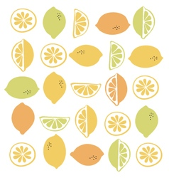 Seamless pattern with citrus fruit clices vector image