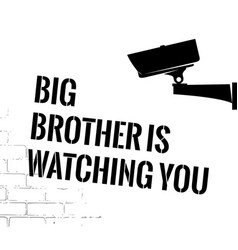 big brother poster with security camera vector image