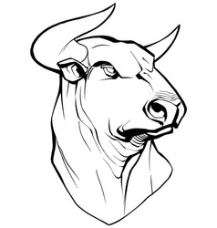 Bull on white vector
