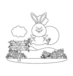 bunny with wooden sign vector image