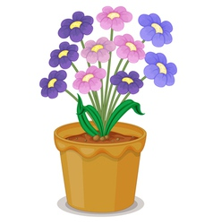 flowers and a pot vector image