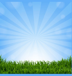 Grass border with sunburst vector