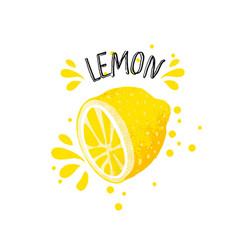 hand draw lemon half of vector image