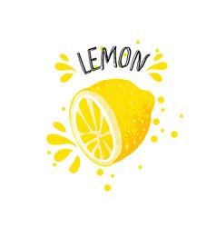 Hand draw lemon half of vector