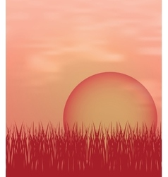 Sunset background with sun and grass vector