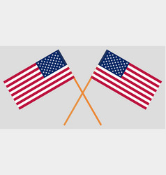 two crossed united states usa national flag vector image