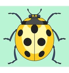 Yellow ladybug insect vector