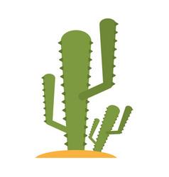 cactus flat vector image