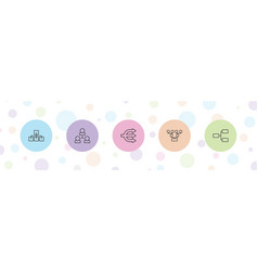 5 organizational icons vector