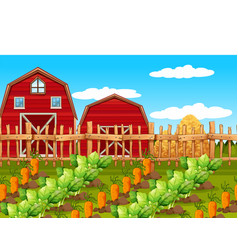 a rural farm landscape vector image