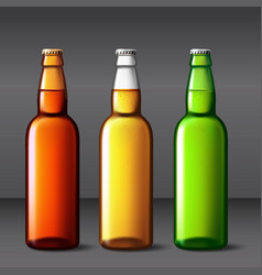 beer bottle glass packaging mockup with vector image