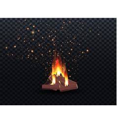 Blazing bonfire inferno fire on vector
