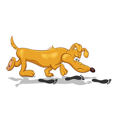 Cartoon of a funny bloodhound dog with fixed look vector