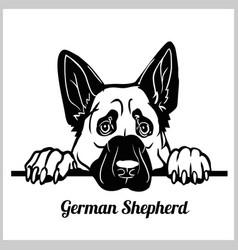 German shepherd peeking peek-a-boo dog breed vector