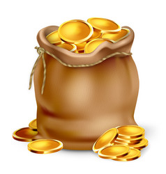 golden coin in vintage fabric bag purse vector image