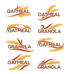 Oatmeal and granola logo template with lettering vector