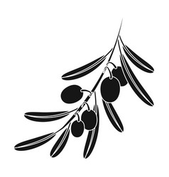 olive brancholives single icon in black style vector image