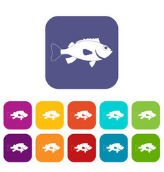 Sea bass fish icons set flat vector