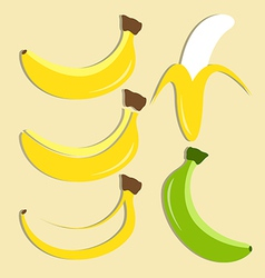 Set of banana icon vector