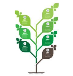 vertical green infographics or timeline vector image