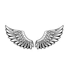 wings design drawings line vector image