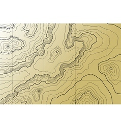 abstract topographic map in brown colors vector image vector image