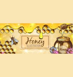 colorful honey banner vector image