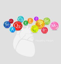 Healthy heart vitamins and minerals vector