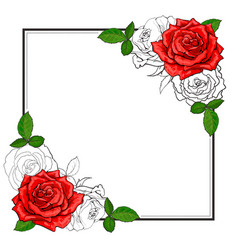 roses bouquet elements in sketch style at corners vector image