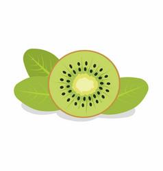 slice kiwi vector image