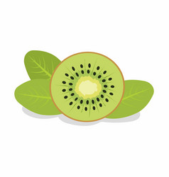 Slice of kiwi vector