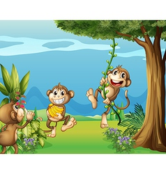 The three monkeys at the hills vector image