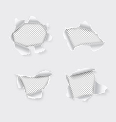 torn hole set in paper on transparent background vector image