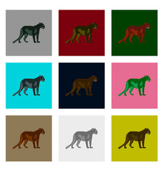 set of in flat style panthers vector image vector image