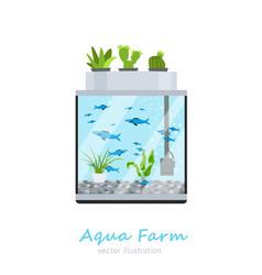 Aquarium image vector