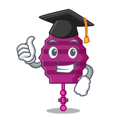 Graduation paper lantern character cartoon vector