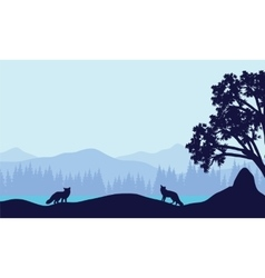 Landscape fox in fields silhouettes vector image