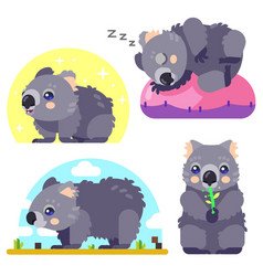 wombat character set vector image