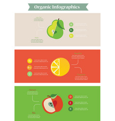Health food infographic vector image vector image