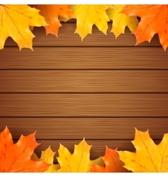 Autumn maples leaves on a wooden background vector image vector image