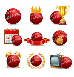 cricket icon set vector image vector image