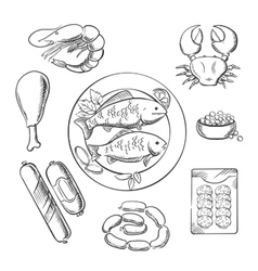 Seafood and meat sketched icons vector image