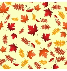 seamless pattern with red and yellow autumn vector image