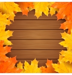 Autumn background with realistic maple vector