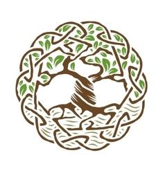 celtic tree life vector image