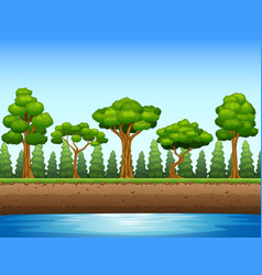 Forest background with river and underground vector